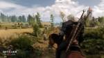 Новый геймплей и подробности The Witcher 3: Wild Hunt